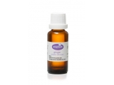 Ginger 100% Pure Essential Oil